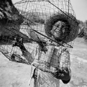 mexico-the-bird-cage-1955